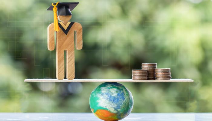 बैक व्यालेन्स कर्जा तथा भिसा प्रकृया कर्जा (Bank Balance and Visa Processing Loan)